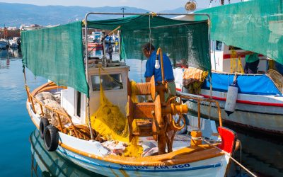 Small-scale Fishing in Greece:                                  Interview with Nikos Anagnopoulos, APC Fisheries