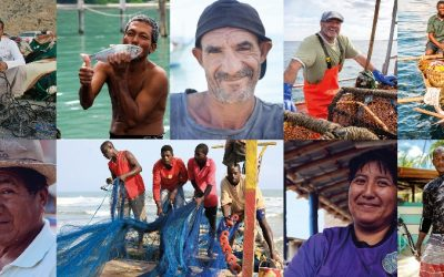 Protecting and Monitoring Small-Scale Fisheries: The Need for A New Approach